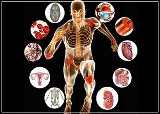 Performance & Health Testing | DexaFit